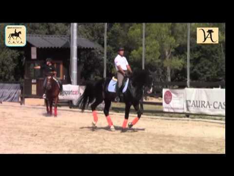 Dressage Clip 28 - Entrenamiento con Víctor Alvarez  en CAVA 11-08-2012