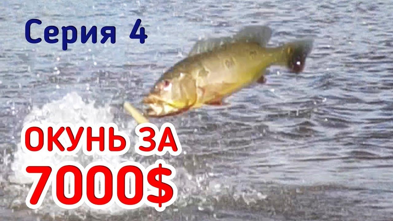 Рыбалка за 7000$! Дикие поклёвки огромных окуней! Съёмка сверху. Серия 4