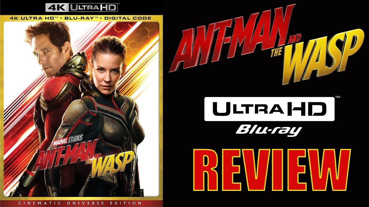 Download ANT-MAN AND THE WASP 4K Blu-ray Review