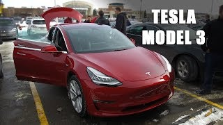 Tesla Model 3 First View