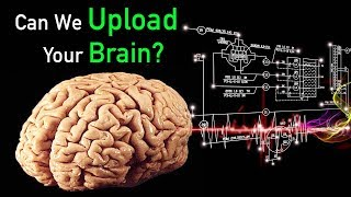 Uploading Your Mind Is 100 Percent Fatal