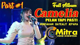 Download FULL ALBUM CAMELIA PELAN TAPI PASTI MINDAHAN DISC A