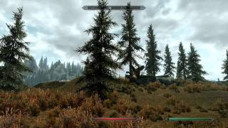 Weird Flying Sabertooth Tiger SKYRIM