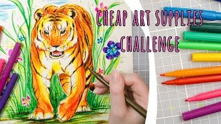 CHEAP ART SUPPLY CHALLENGE - Markers (Water based)