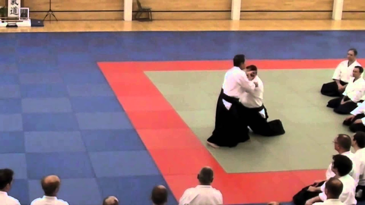 Excellent Aikido - Anticipation Christian Tissier Shihan 2
