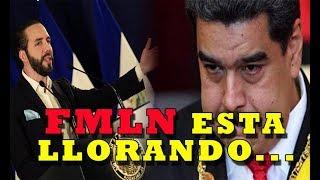 Ultima Hora Nayib Bukele EXPULSA A DIPLOMÁTICOS VENEZOLANOS de El Salvador