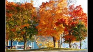 Que bonito es el otoño