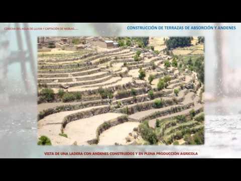 Construcción De Terrazas De Absorción Y Andenes Phd