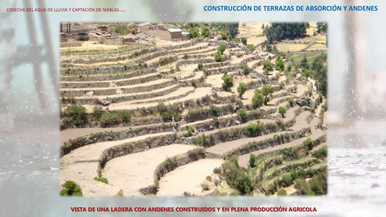 Construcción De Terrazas De Absorción Y Andenes Phd Absalón Vásquez