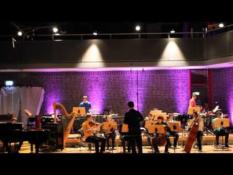 Xin Xie - Maserungen III --für Ensemble (2012)