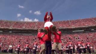 2016 Clemson University Tiger Band - The Beauty of Life