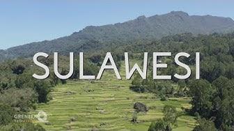"""""""Grenzenlos - Die Welt entdecken"""" in Sulawesi"""