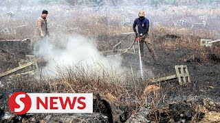 Kuala Langat Selatan forest fire spreads to over 40 hectares