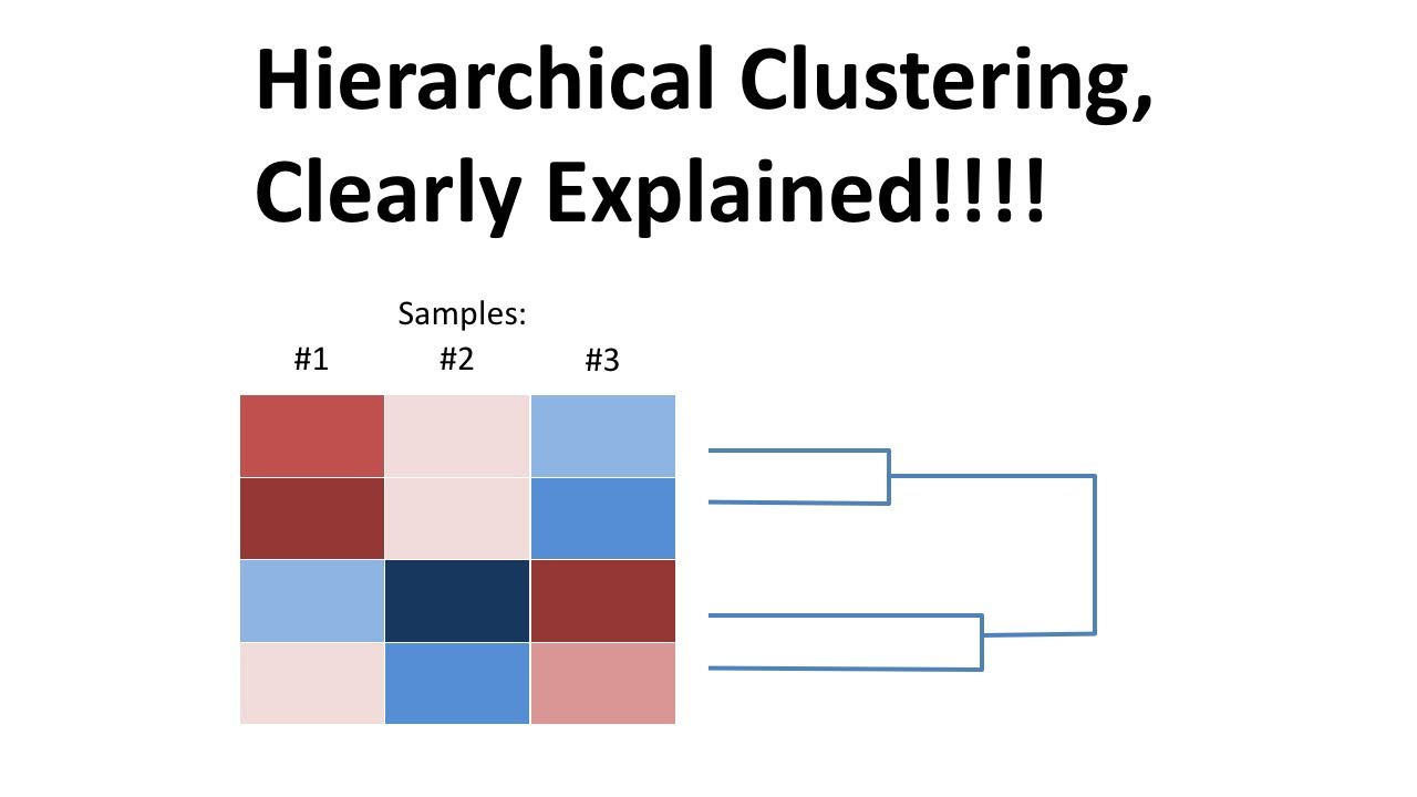 StatQuest: Hierarchical Clustering