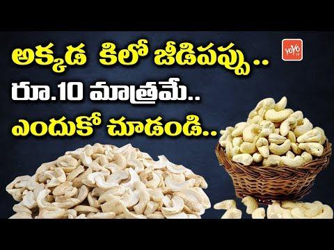 Kaju Per KG 10 Rupees Only! | Kaju Benefits | Cashew Price | Jeedipappu Labhalu | YOYO TV Channel