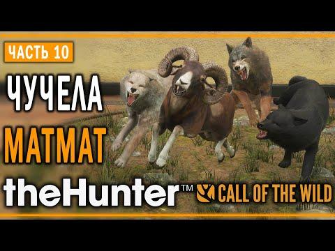 theHunter Call of the Wild #10 ???? - Оскаленные Клыки - Кoмпозиции из Чучeл