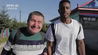 《地球村日记》 20200104 吉林龙井智新镇 第三天|CCTV农业