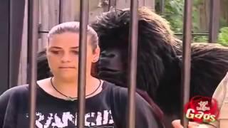 Khi Người Giả Khỉ !! Cực Vui!!