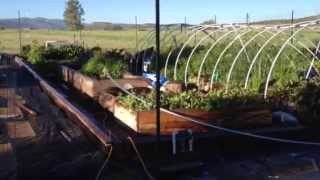 Build an inexpensive greenhouse (part 2)