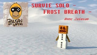 Survie Minecraft Solo FR - Frost Breath #3