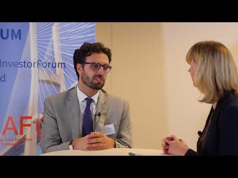 Financing energy efficiency with Antonio Ciccarelli (SEAF Investor forum)