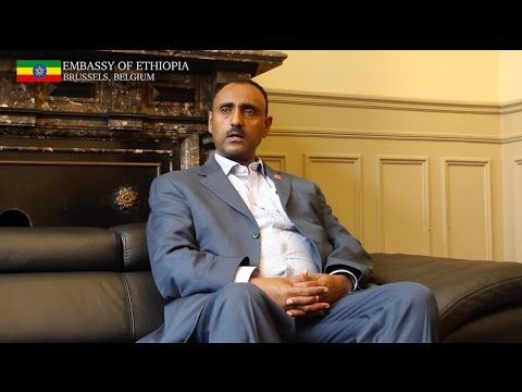 Interview with Dr Mebrahtu Meles, Ethiopian State Minister for Industry