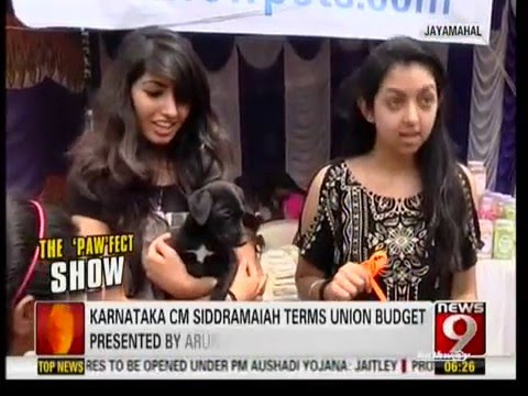 Bangalore Pet Show 2016 News9
