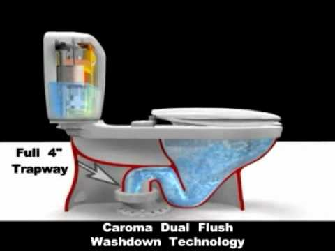 Caroma Toilets Washdown Vs Siphon Flush Youtube