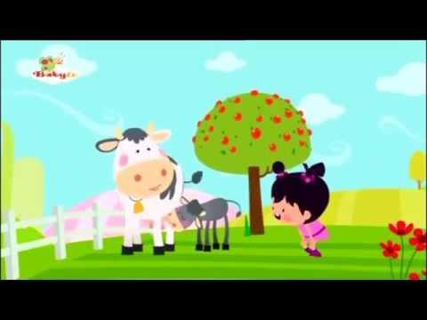 Little Lola Baby Tv Youtube