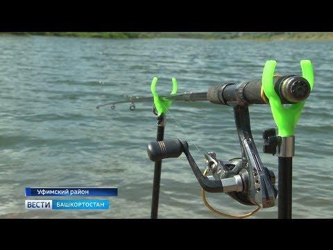 Вопрос: К чему привёл новый закон о рыбалке?