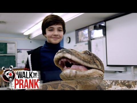 Pet Snake | Walk The Prank | Disney XD