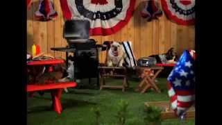 Tv Spot - Mattress Discounters - 4th Of July Sale 2014 - Bulldog's Backyard Bbq