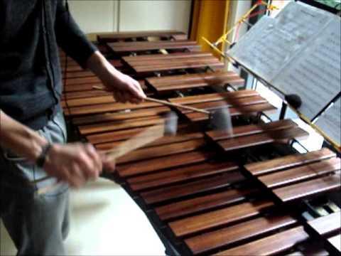 Alestorm - Keelhauled (Marimba)
