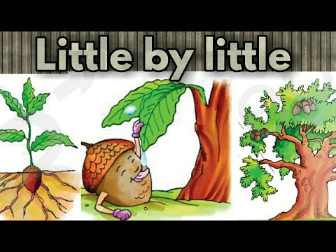 Class 3- poem- ( Little by little ) unit 3 of english book - marigold.  HINDI explanation