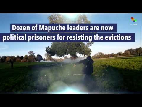 The Mapuche People are the largest Indigenous population in South America