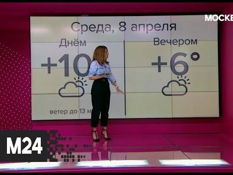"""""""Погода"""": теплая погода ожидается в столице 8 апреля - Москва 24"""