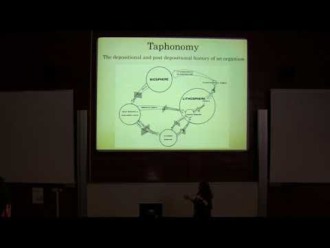 Palaeoecology and Taphonomy of Microvertebrates from the Hell Creek Formation