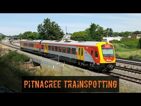 Sydney Trains Vlog 1265: Pitnacree Train Spotting