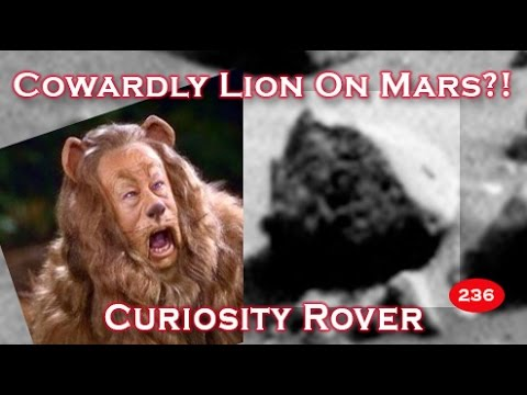 Wizard Of Oz Cowardly Lion Looking Statue Head On Mars!?
