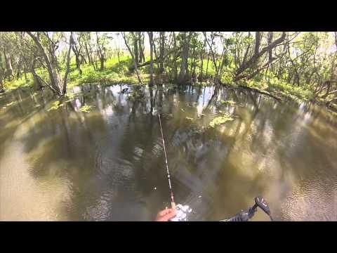 Bayou Black Bream Fishing