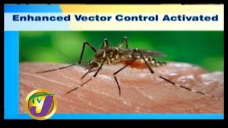 TVJ Midday News Spike in Suspected Dengue Cases in Jamaica - August 19 2019