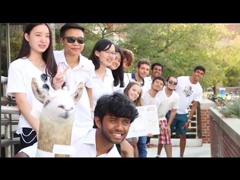 international-peer-mentoring-program-(ipmp)-at-iupui