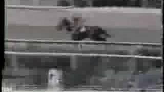 Clasico Republica de Venezuela 1992