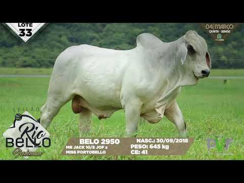 LOTE 33   BELO 2950