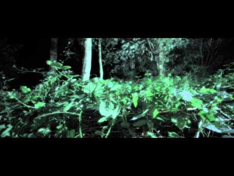 """Sara Jackson-Holman - """"Cellophane""""  Official Music Video"""