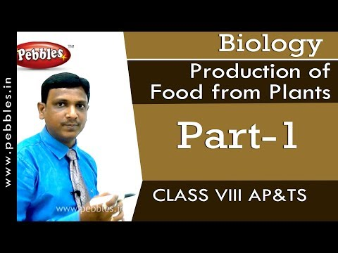 Part-1 : Production of food from Plants | Biology | Class 8 | AP&TS Syllabus
