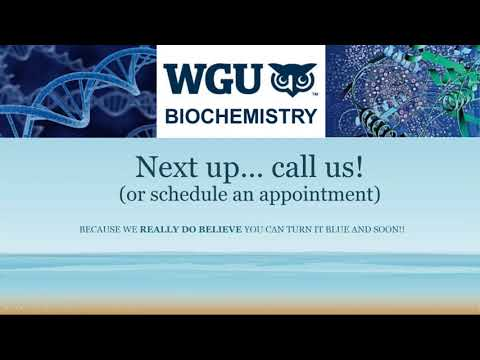 Download Wgu Fast Forward Ep 2 First Two Tests Study Tips