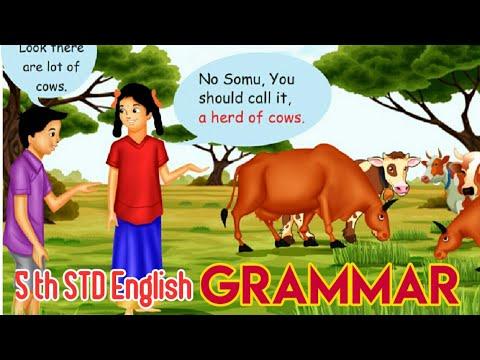 5th STD English GRAMMAR LET US KNOW