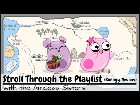 Stroll Through the Playlist (a Biology Review)