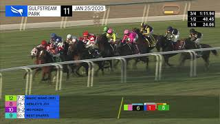 Vidéo de la course PMU PEGASUS WORLD CUP TURF INVITATIONAL